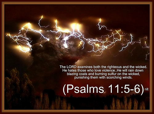Revealing the truth about Psalms 11 by Denise N.Fyffe