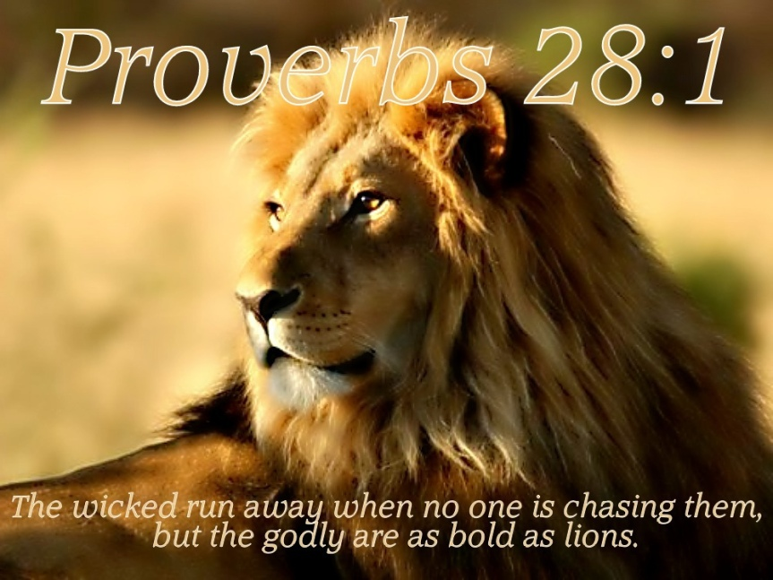 Revealing the truth about Proverbs28:1