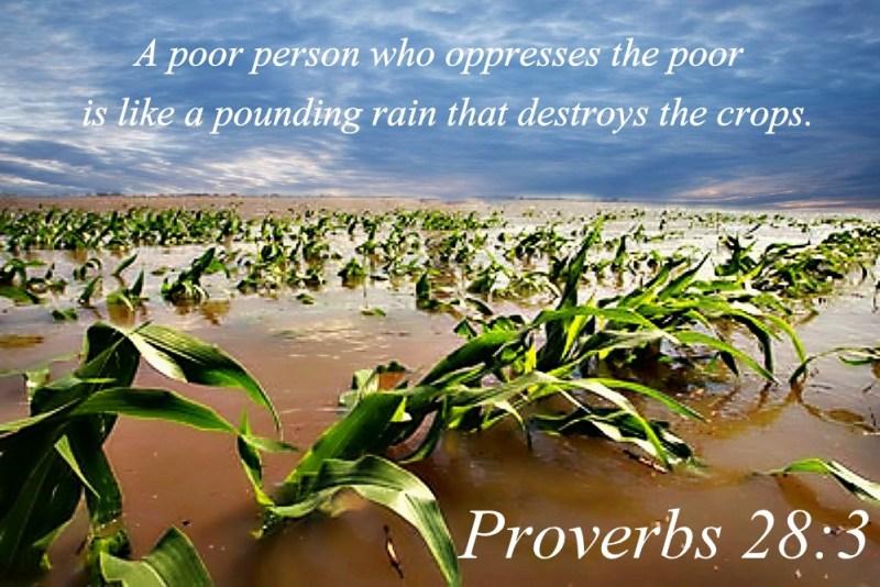 proverbs 28 3