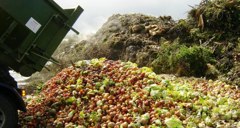food-waste image courtesy of functionaleconomy